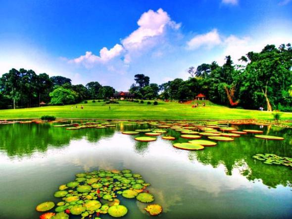 BOGOR : Bogor Botanical Garden was built in 1817 and has an area of 87 acres. Botanical Garden is a place of research, conservation and botany Indonesian tourism. Bogor is approximately 50 km from Jakarta.
