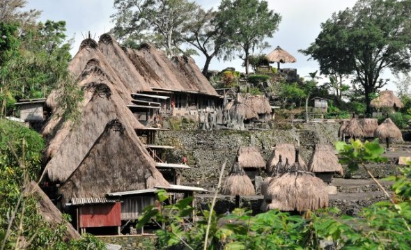 Not affected by eviction times, perhaps the right phrase for this traditional village. Distinctively Manggarai villages that can be found in Bajawa, Flores adds to the diversity of cultural heritage.