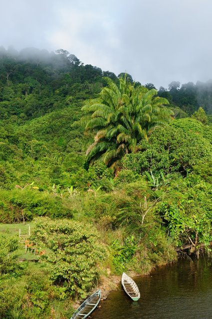 MALINAU : District located in East Kalimantan has an area such as rubber plantations, coconut, oil palm, coffee, cocoa, pepper, etc.. Malinau city is closest to Tarakan City and can be reached by plane for 25 minutes or 3 hours by speedboat.