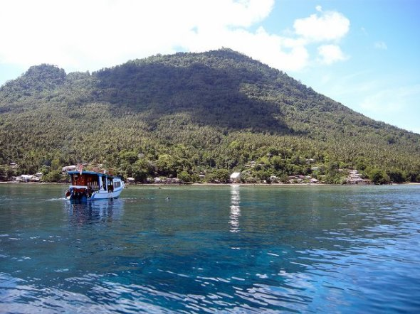 MANADO : The wealth of marine life in the island of Manado Tua within 1 hour from Manado.