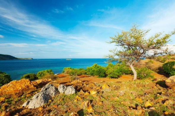 SERAYA ISLAND : Swimming, fishing or see the dragons? As the island is located in the East is one of the tourist attractions in Indonesia are natural. As the island is about 10-12 km from the city of Labuan Bajo and can be reached by boat.